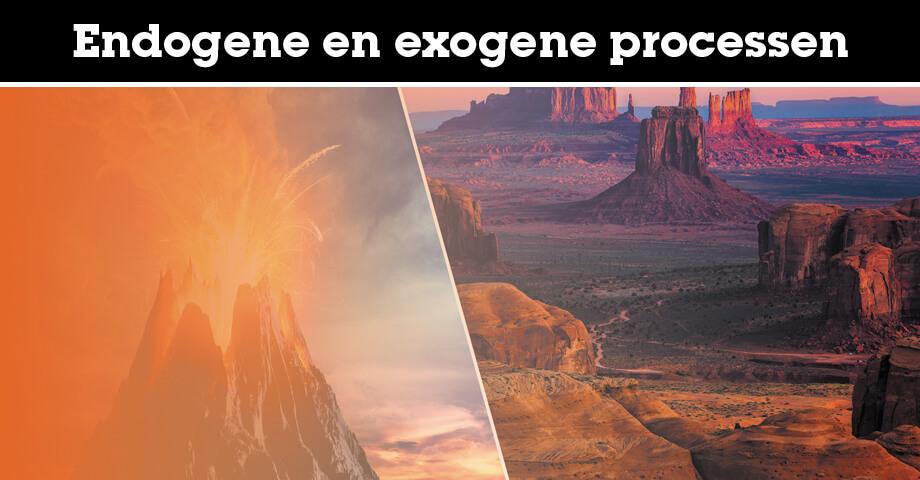 Endogene en exogene processen