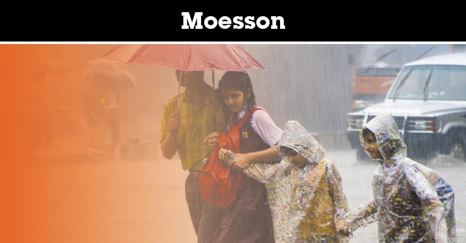 Alles over de moesson