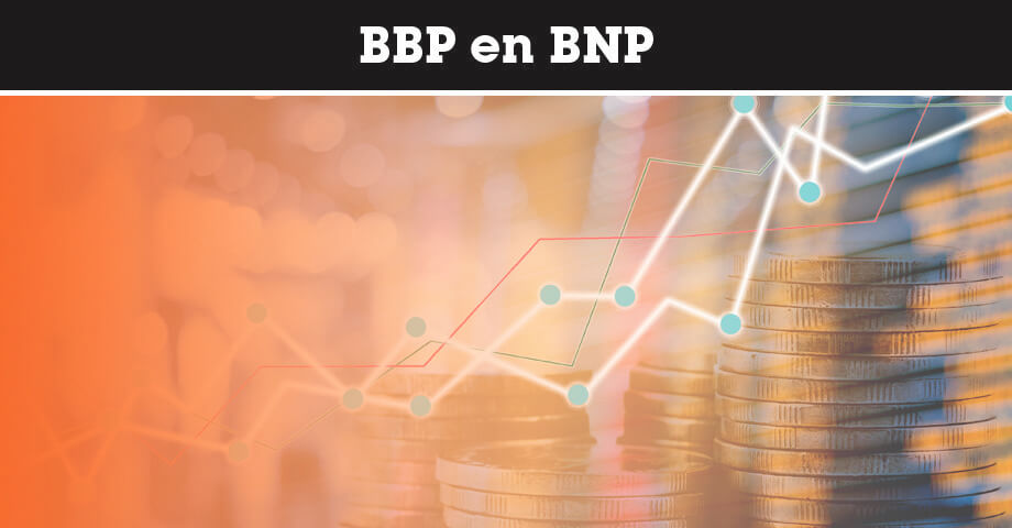 BBP en BNP