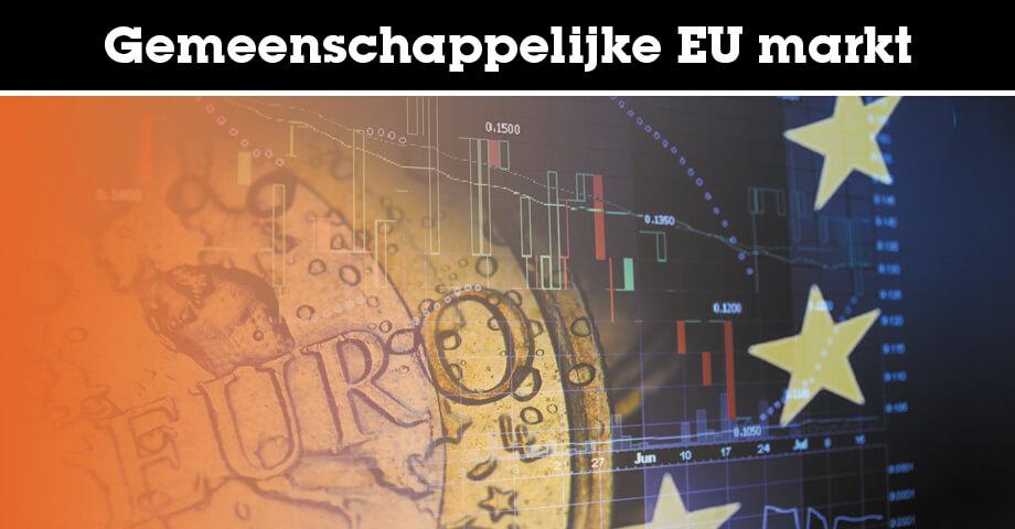 Gemeenschappelijke EU markt