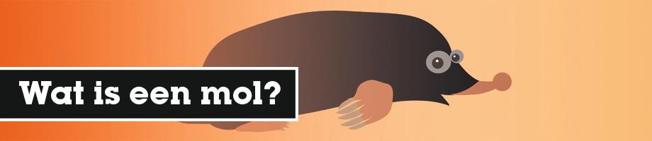 Wat is een mol?
